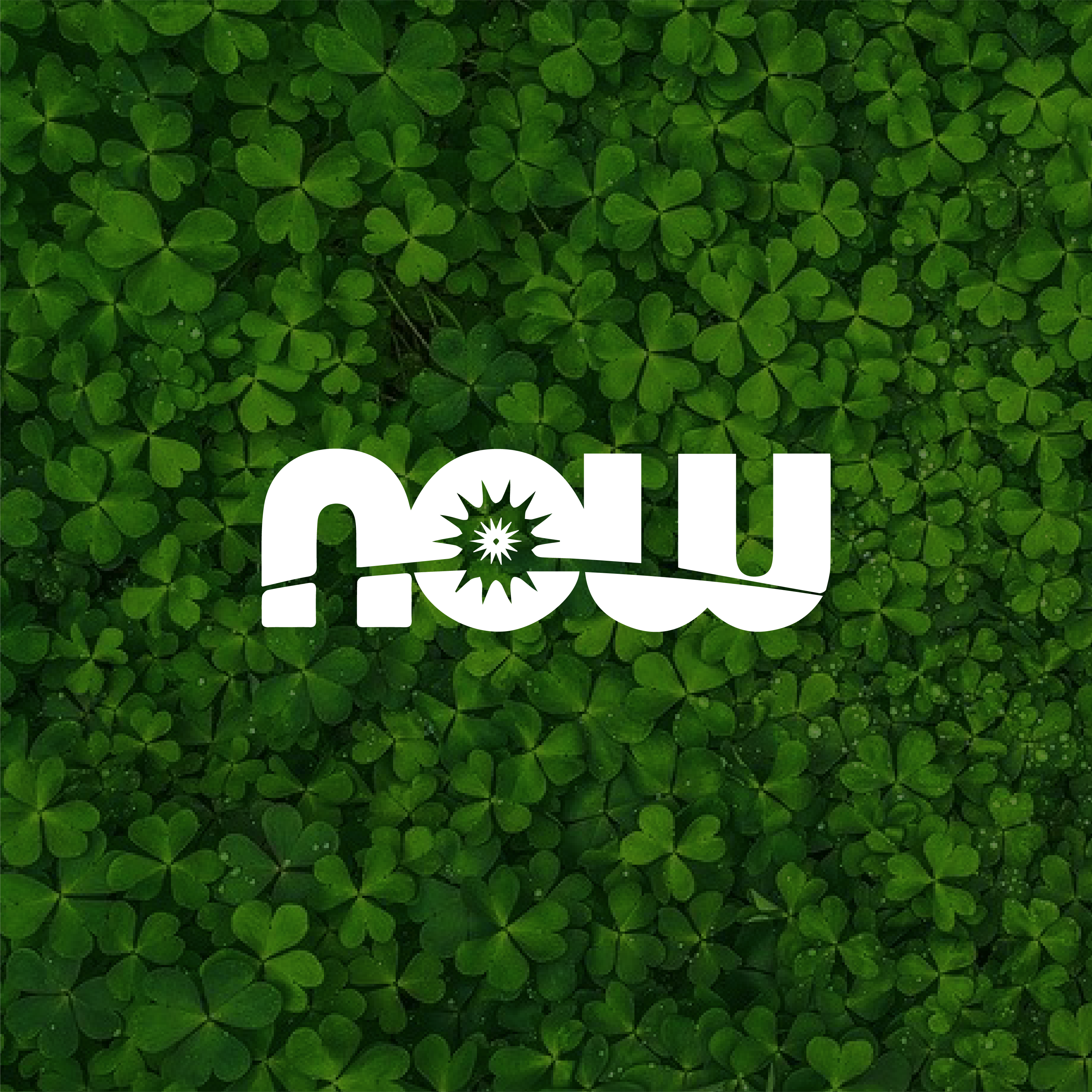 Website_Now