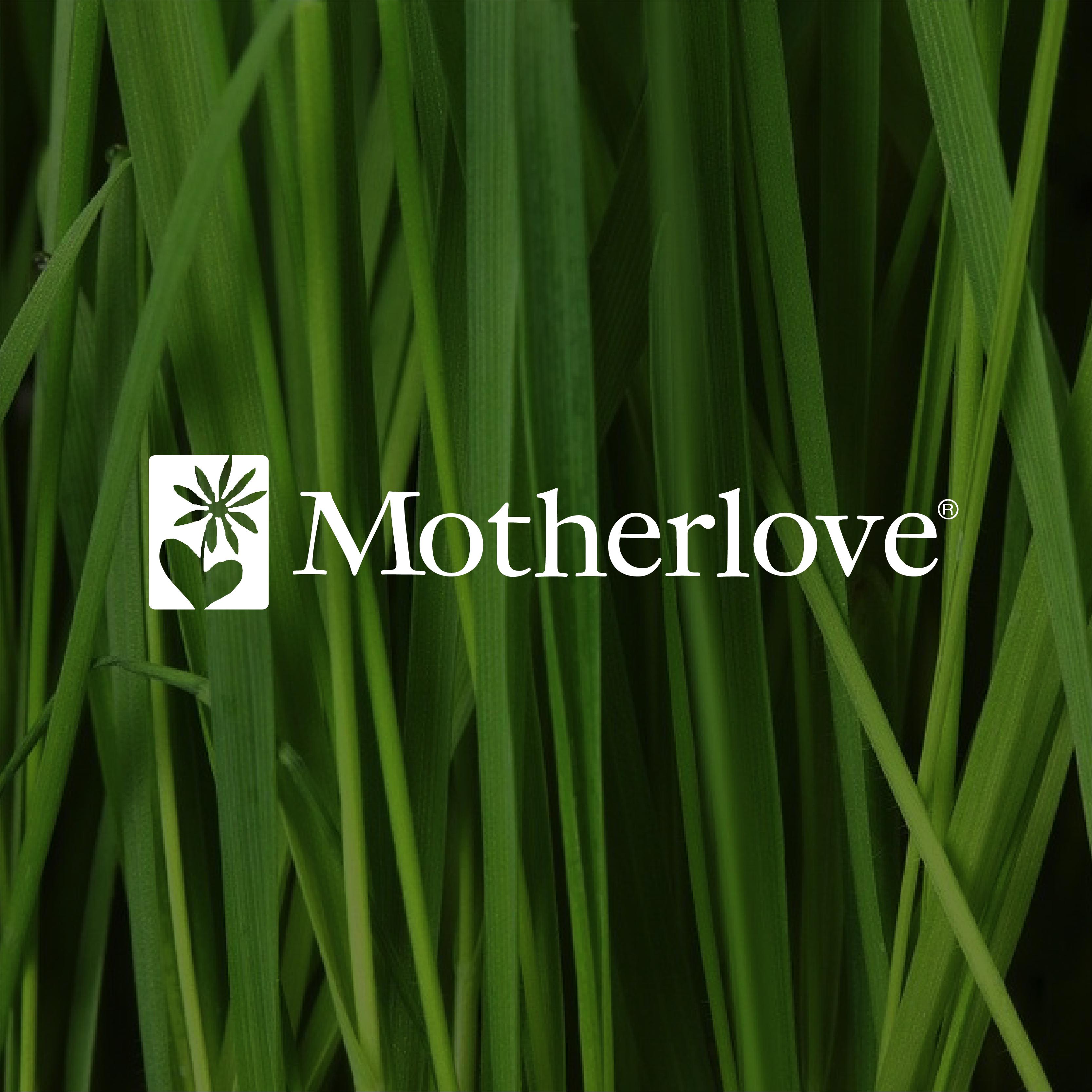 Website_MotherLove