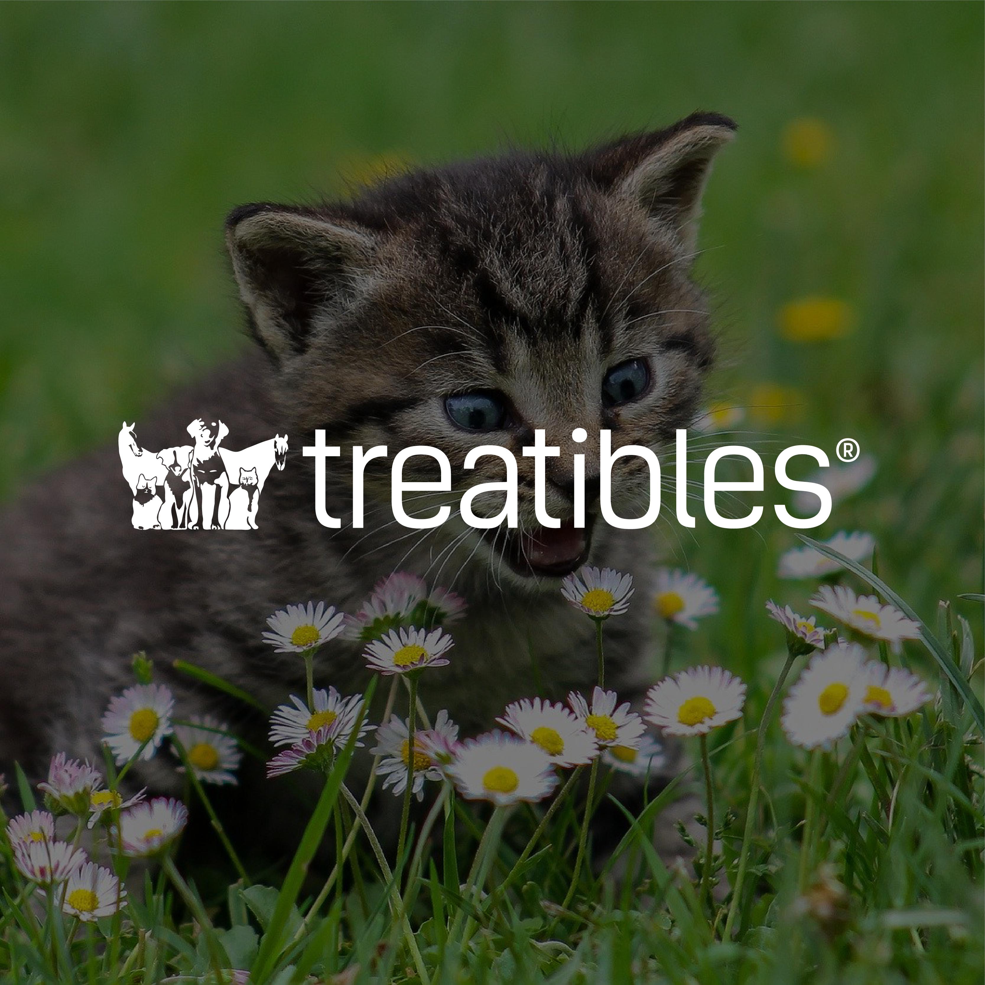 Website_Treatibles
