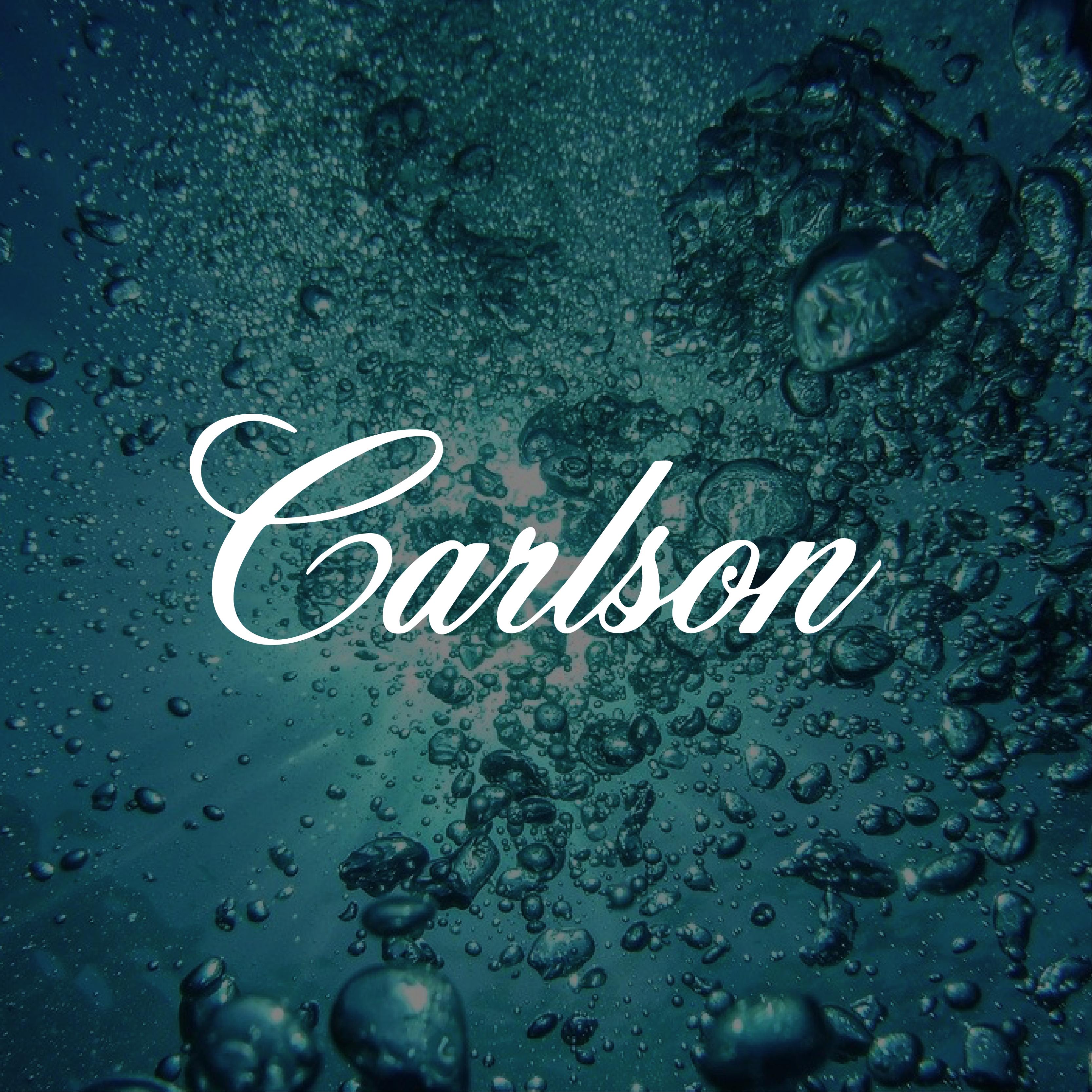 Website_Carlson