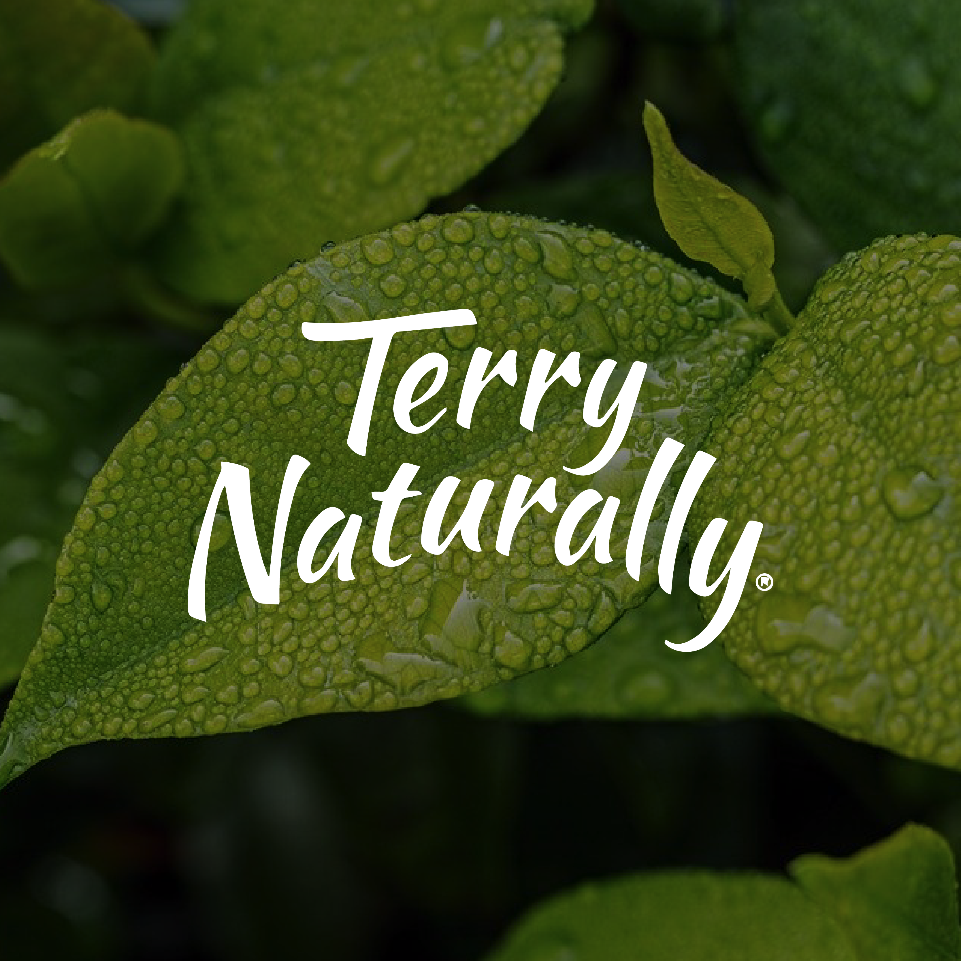 Website_TerryNaturally