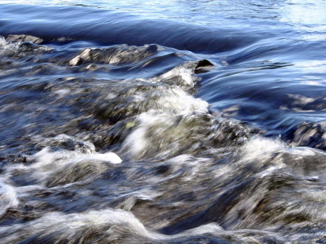 Rideau River, Strathcona Park IMG_5611