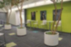 College lobby