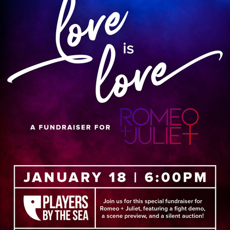 LOVE IS LOVE | Fundraising Event for Players by the Sea