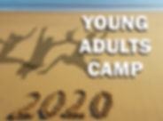 Young Adults 2020 MailChimp.png