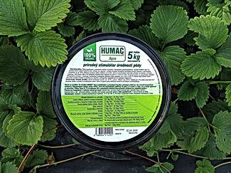 HUMAC Agro jahody