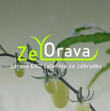 Zelorava