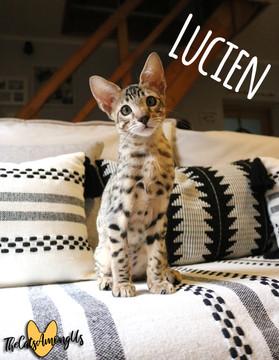 Lucien4.jpg