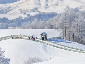 ¿Qué hacer en Corea del Sur en invierno?