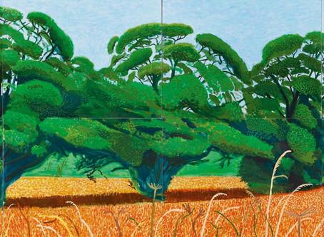 De bomen van David Hockney