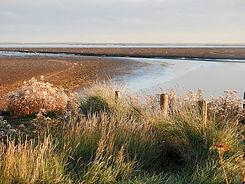 wadwatch-landscape-1729065_1920 by Bru-n