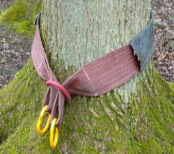 boomvriendelijke ophanging LIVINWOOD