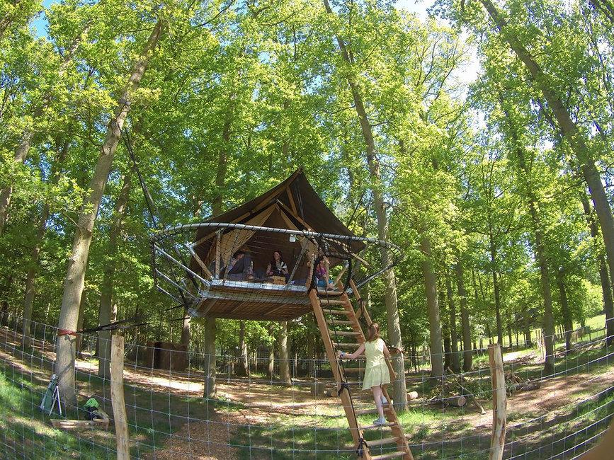 Arborist Bruno bouwde de Dom Up LIVINWOO