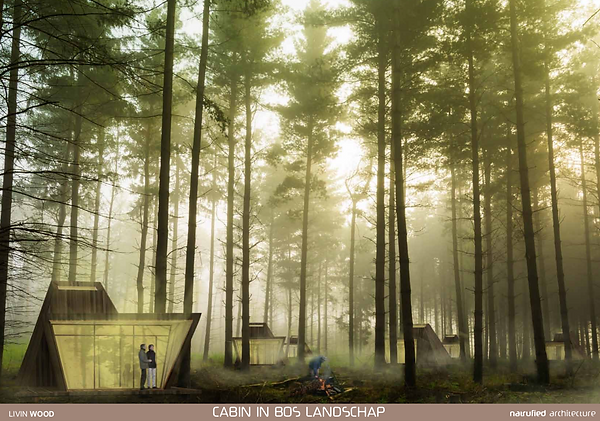 Wood One cabin in het bos (livinwood).pn