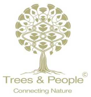 logo Trees and People LIVINWOOD