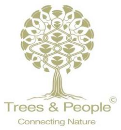 logo Trees and People LIVINWOOD