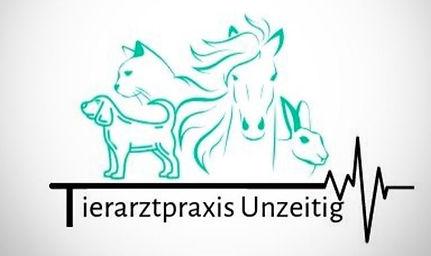 logo praxis_edited.jpg