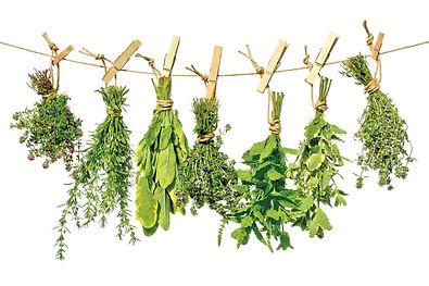 HBC-AM11-hanging-herbs-srstock-44169562a