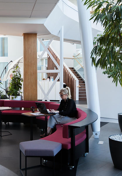 Workplace Furniture | Hamish Shaw Architects | Seating | Curved | Tait Limited | Commercial Cafe | Soft Fitout | Workplace Strategy | Cushioned | Wheels | Ergonomic |