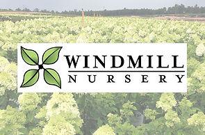 Windmill-Nursery-logo.jpg