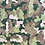 Thumbnail: Camouflage