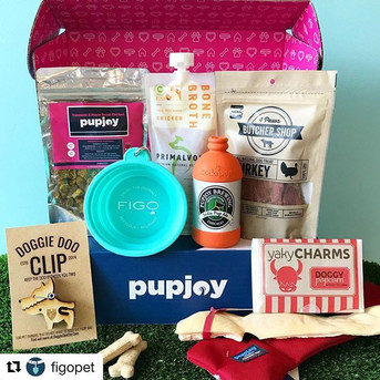 #Repost _figopet with _get_repost_・・・_The National Pet Month celebrations continue over here, and this week, we're celebrating with the help