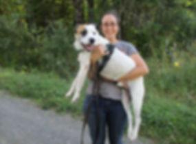 Trainer holding shelter dog