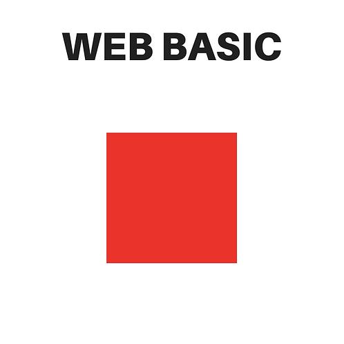 Web Development Basic