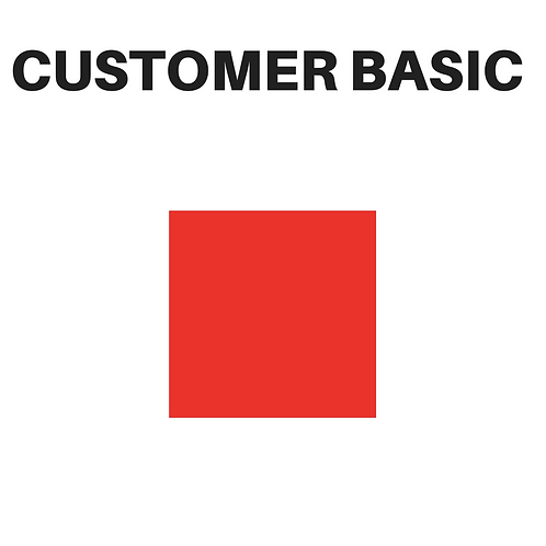 Customer Service Basic