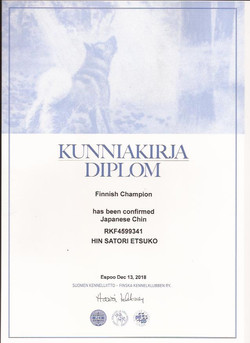Finnish CH