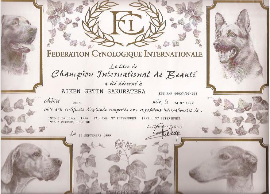 International-CH