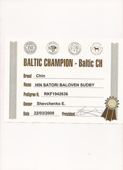 BaltCH
