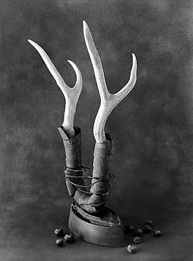 blueberriesantlers2_info.jpg