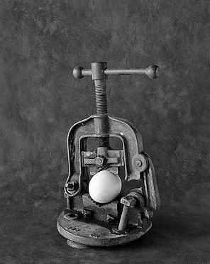 eggvice2.jpg