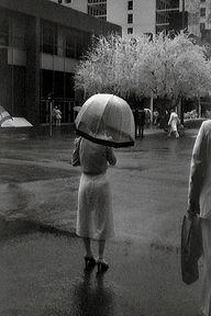 umbrella_new2.jpg