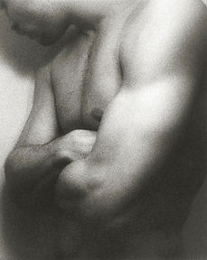torso23.jpg
