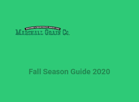 Fall Season Guide to Organic Lawn Care for North Texas