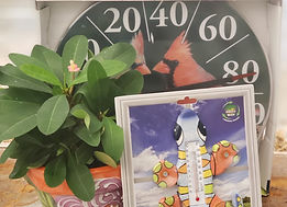 gift thermometer_153042.jpg