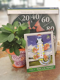 Decorative Thermometers