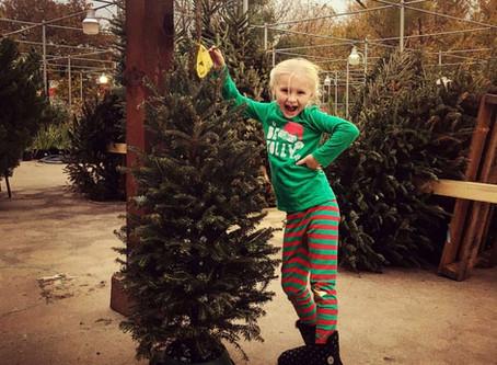 5 Essentials Tips For Christmas Tree Enjoyment