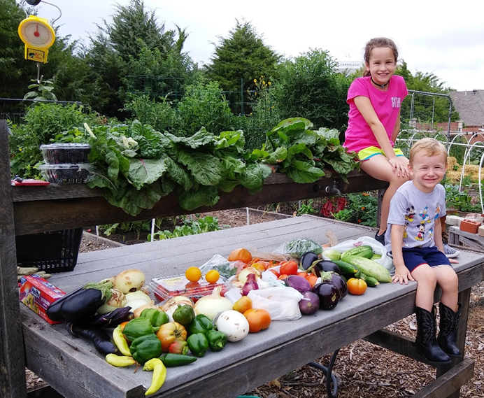 Organic produce harvested by The Giving Garden of Carrollton