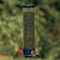 bird feeders grapevine tx