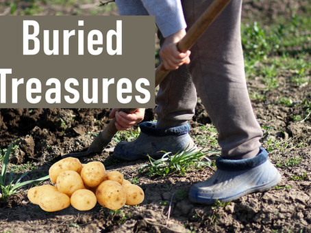 Buried Treasures: Episode 2, Spring Vegetable Gardening Series
