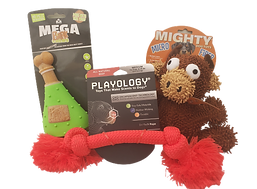 dog toys group_155620.png