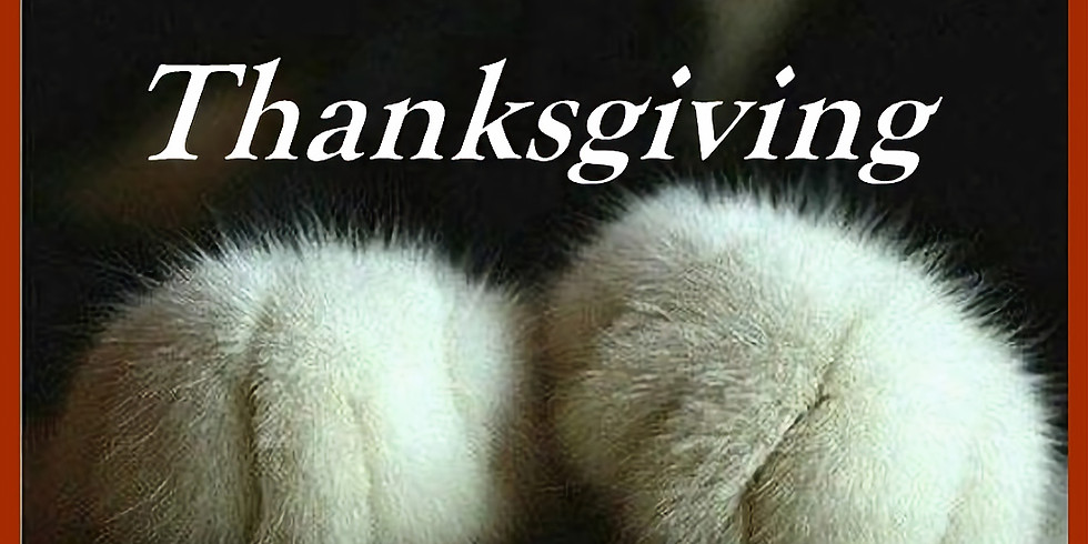 We Paws for Thanksgiving