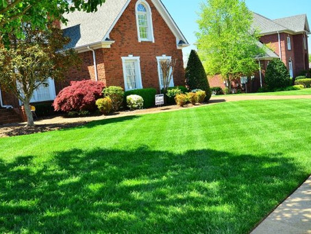 7 RULES FOR A HEALTHIER LAWN