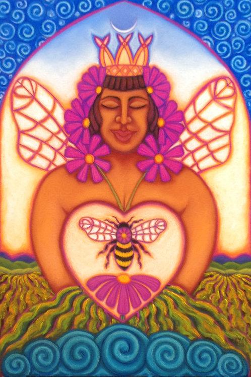 Cosmos Queen Bee, Available at Prentice Gallery