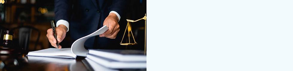 Digital Legal Service Model
