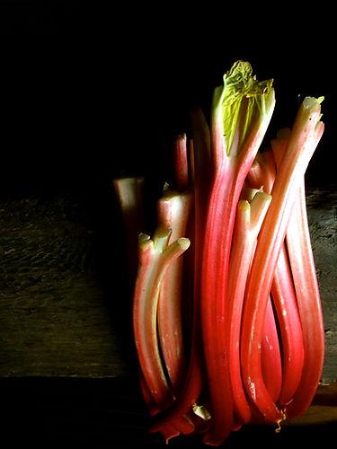 Early Rhubarb