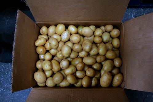 Salad potatoes 10kg
